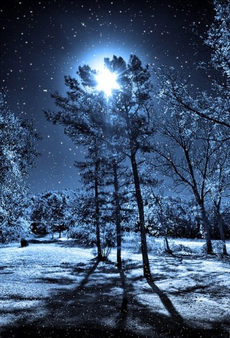 magicalwinternightmoon