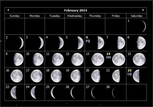 http://auntiemoon.files.wordpress.com/2014/01/feb2014moonphases.jpg