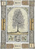 Beith Birch Celtic Tree Oracle