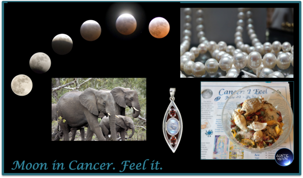 zodiac-symbols-cancer