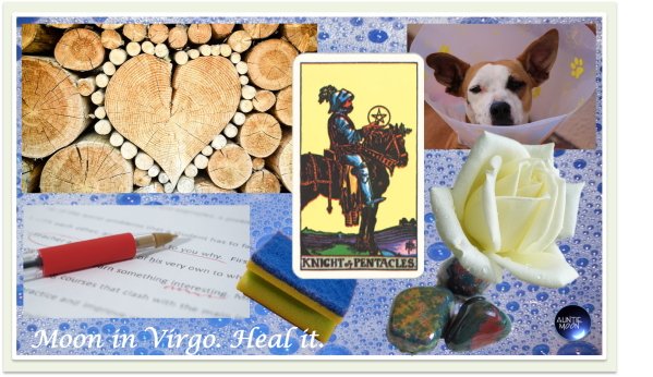 zodiac-symbols-virgo